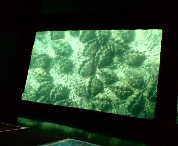 石垣島の川平湾1