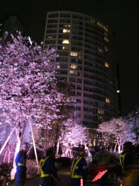 赤坂サカスでミニマラソン応援と桜