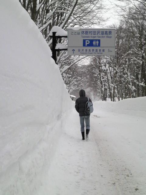積雪推定2m